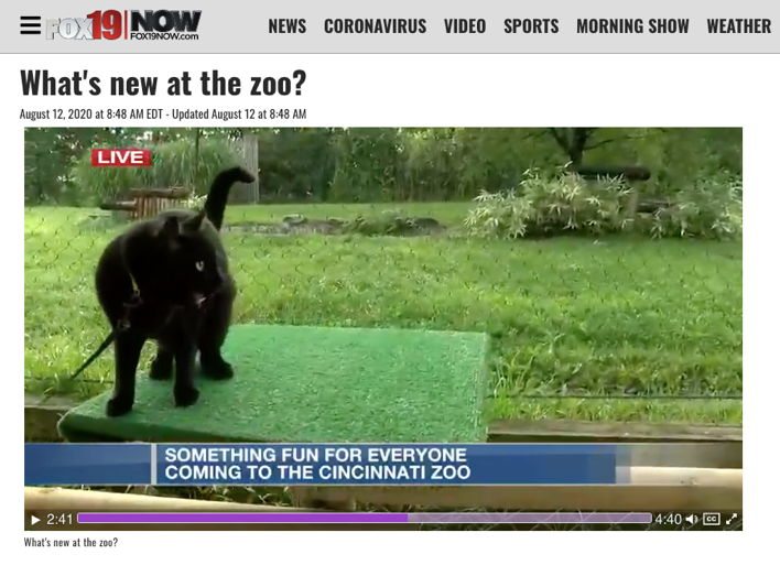 Thane Maynard Describes the Cincinnati Zoo's Partnership with the Joanie Bernard Foundation on Fox19 Morning Extra