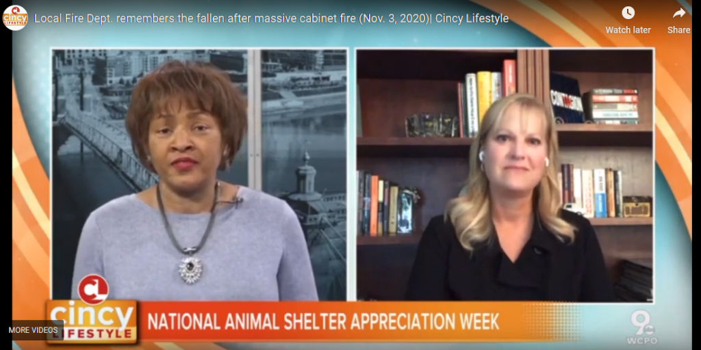 Cincy Lifestyle Celebrates National Animal Shelter Appreciation Week with the Ten Movement