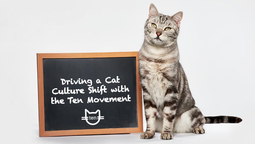 Deborah Cribbs Hosts Webinar with American Pets Alive!